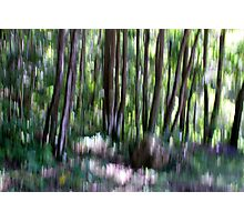 Light strokes Photographic Print