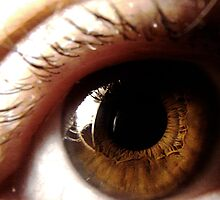 brown eye by tego53