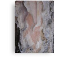 Natural Beauty in the Raw Canvas Print
