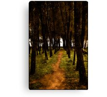 Forrest paths Canvas Print
