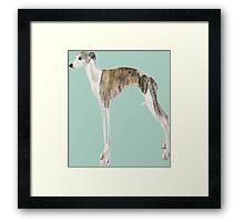 Tall Dog Whippet- Color Background Framed Print