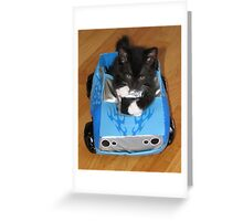 Speed Racer with Catitude Greeting Card