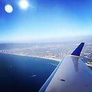 Flying over LA by omhafez