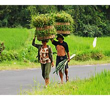 Balinese farmers carrying grass on their heads Photographic Print