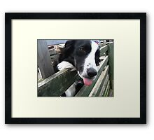 Rude Girl Framed Print