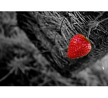 Strawberry Red Photographic Print