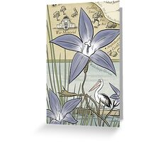 Lake 50 Wahlenbergia Greeting Card
