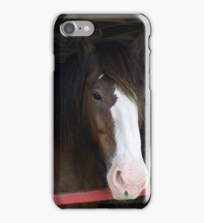 Shy shires iPhone Case/Skin
