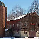 Trumbull County Barn by Monnie Ryan