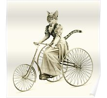 Victorian Cat Series 03 Poster