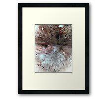 flesh #4 Framed Print