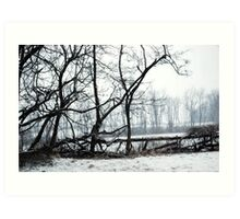 Look at the Snow Fall! Art Print