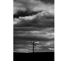Under a lonely sky Photographic Print