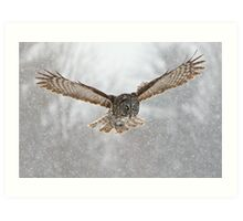 Great Gray Owl flying in snowstorm Art Print