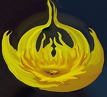 Daffodil Flame by serendipity3