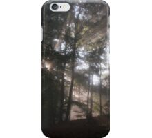 Sunbeams in the forest iPhone Case/Skin