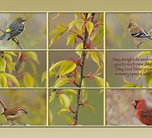 May songbirds awaken you to each new day . . . by Bonnie T.  Barry