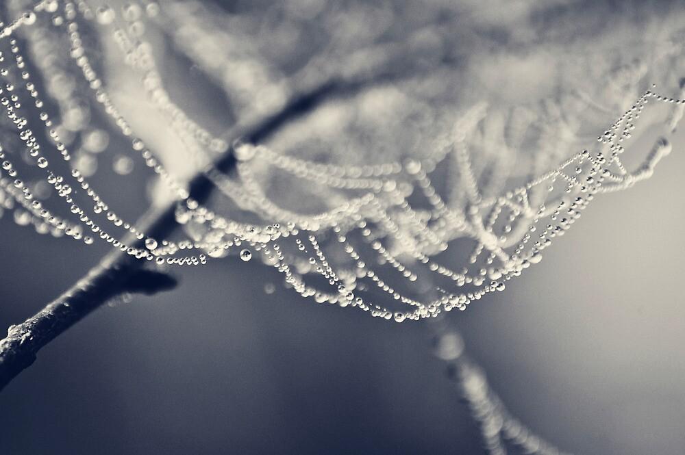 Bejeweled by Sarah Moore