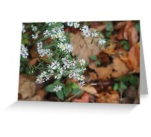 Flowers in Autumn Greeting Card