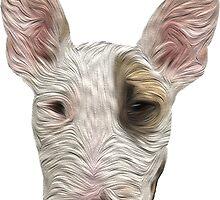Bull Terrier II by ProjectMayhem