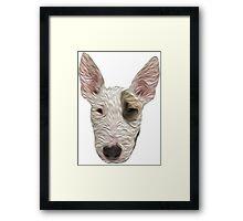 Bull Terrier II Framed Print