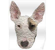 Bull Terrier II Poster