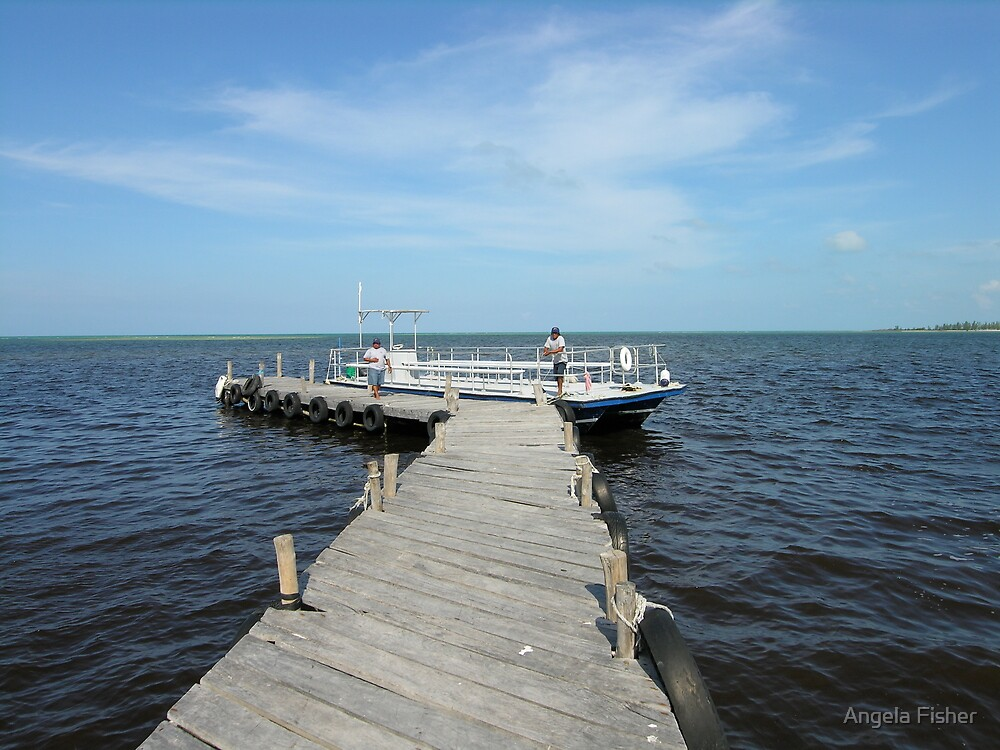 Caribbean Cruise Excursion Dock by Angela Fisher