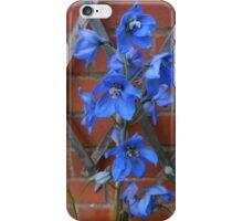 Delphinium Delight iPhone Case/Skin