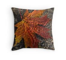 Colors and Patterns  Throw Pillow