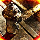 The Water Hydrant by LaFleureRouge1