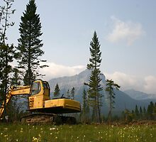 Logging Equipment by Darcy Overland