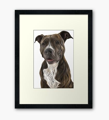 Pit Bull Terrier Oil Painting Style White Background Framed Print