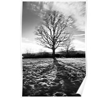 Shadows over melting snow - Malvern, Worcestershire Poster