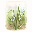 Bluebells in the meadow by Maureen Sparling