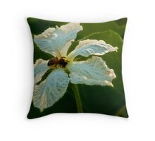 Lace...... Throw Pillow