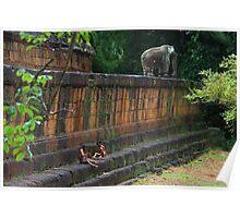 Children of East Mebon - Angkor, Cambodia. Poster