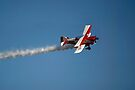 """Pitts """"Coke Machine"""" In Action by Gene Walls"""