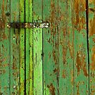 The Green Door by ChristinaR