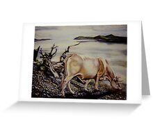 Which are my roots? Greeting Card