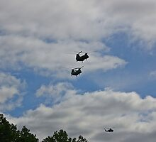 Helicopters by pmarella