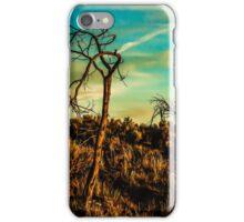 sunset #200 iPhone Case/Skin