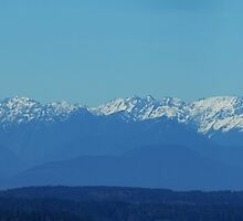 Olympic Mountains, Olympic National Park by Loisb