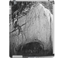 Looking Out To The Sea iPad Case/Skin