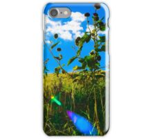 Sunflower in the Sun iPhone Case/Skin