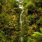Erskine Falls - Lorne by Benson Lam