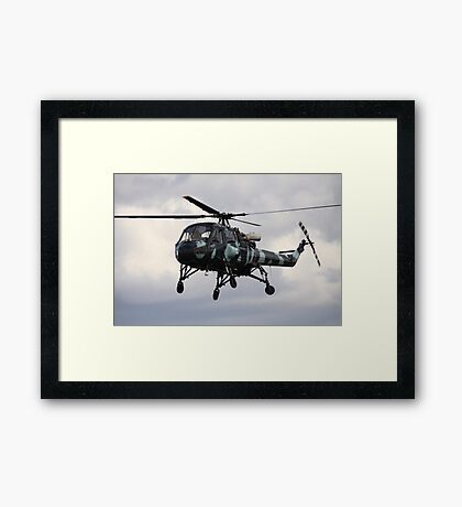 Westland Wasp Framed Print