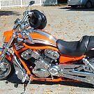 Orange Bike by crazyhorse557