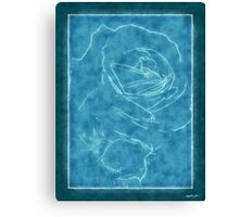 Pink Roses in Anzures 2 Outlined Blue Canvas Print