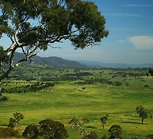 Warm Spring Morning over Murrumbidgee Valley in Canberra by archenar76