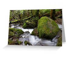 Edged in Green Greeting Card